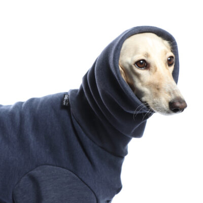DG Dog Gear